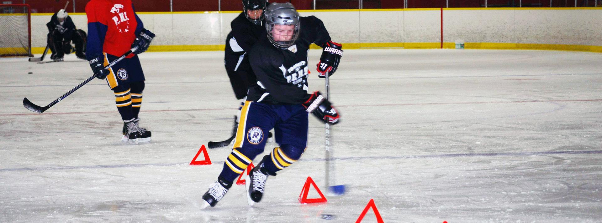 in season hockey training program pdf